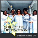 Listen | Buy - Voices of Distinction